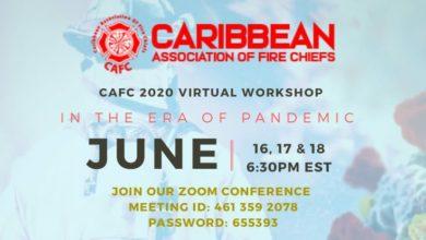 Photo of CAFC 2020 Virtual Workshop